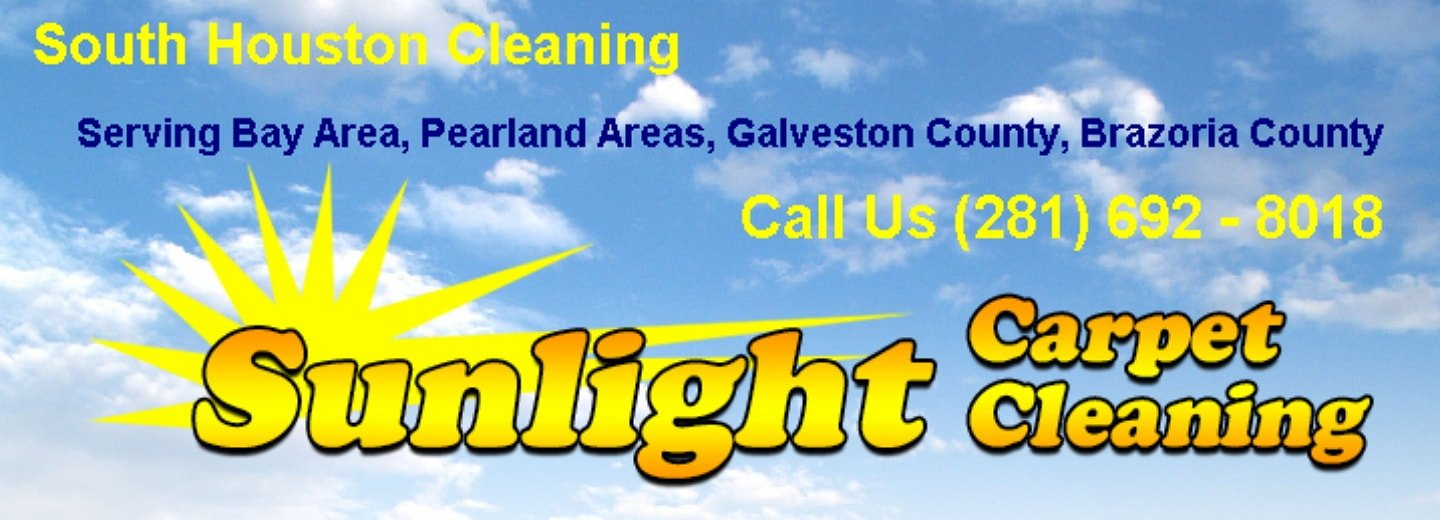 Alvin carpet cleaning company